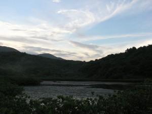 土瓜坪淺灘紅樹林