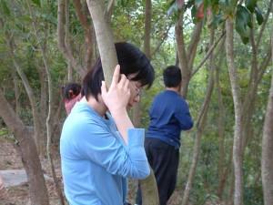 靜聽樹的心跳